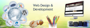 service-website-design-development
